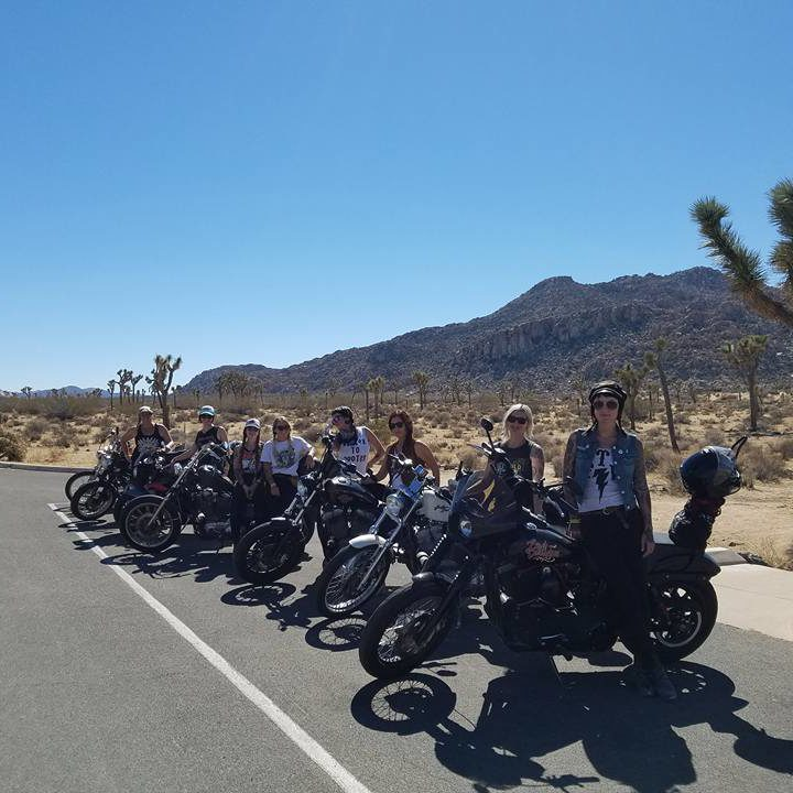 Look at all these babes in Joshua Tree National Park!
