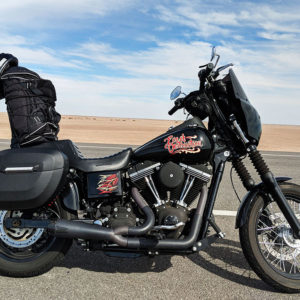 Review: Viking Lamellar Large Leather Shock Cutout Hard Saddlebags
